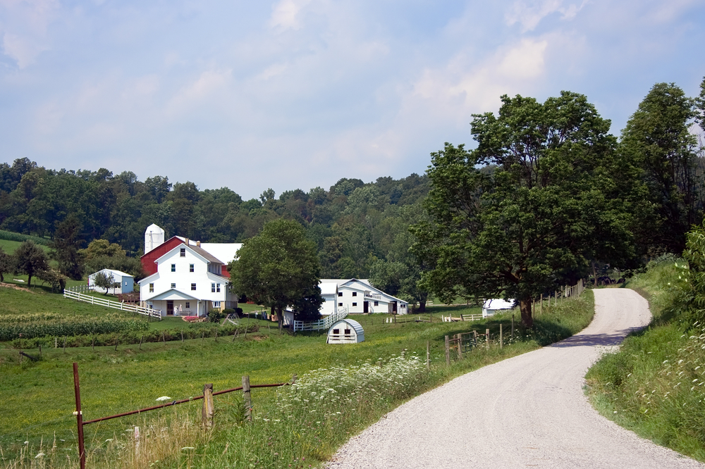 Scenic drive in Amish County Ohio with white houses and red barns alongside rural road.