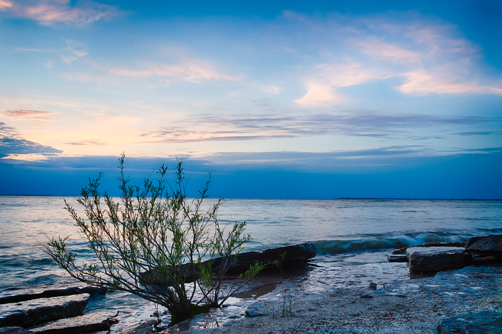 Sunset picture of Kelley's Island beach in Ohio with rocky shoreline and tree in foreground.