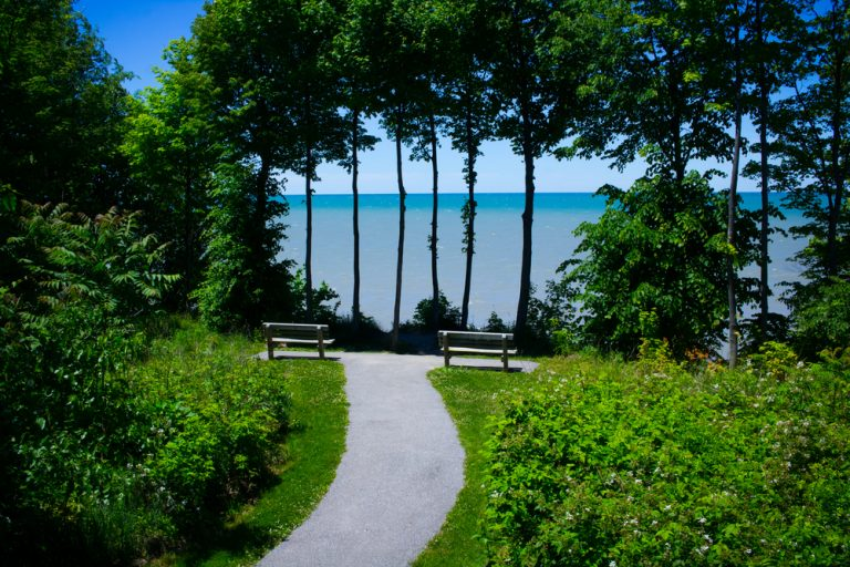 greenery-lined pathway leading to Lake Erie. Water in background through trees.