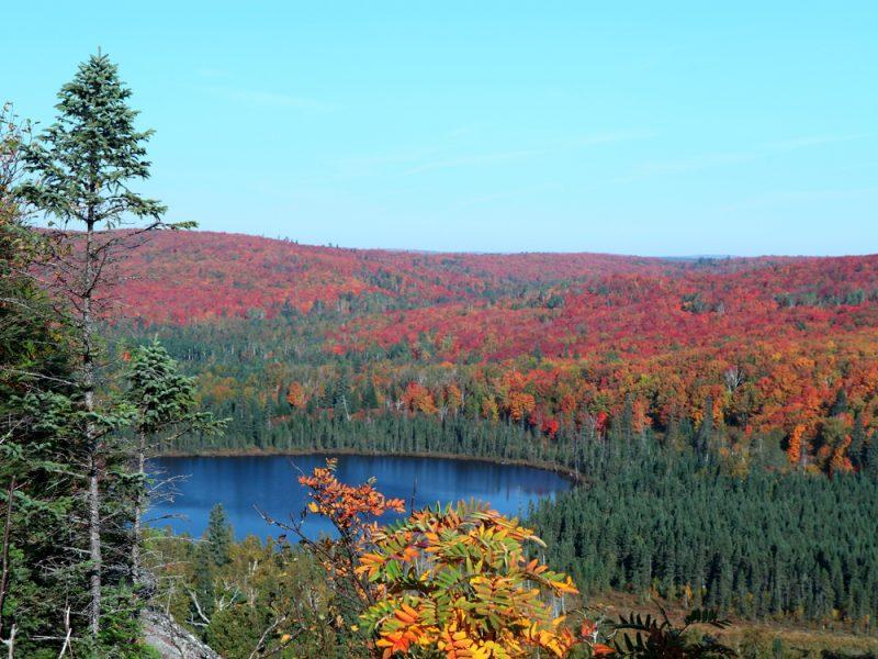 Stunning fall foliage Minnesota North Shore