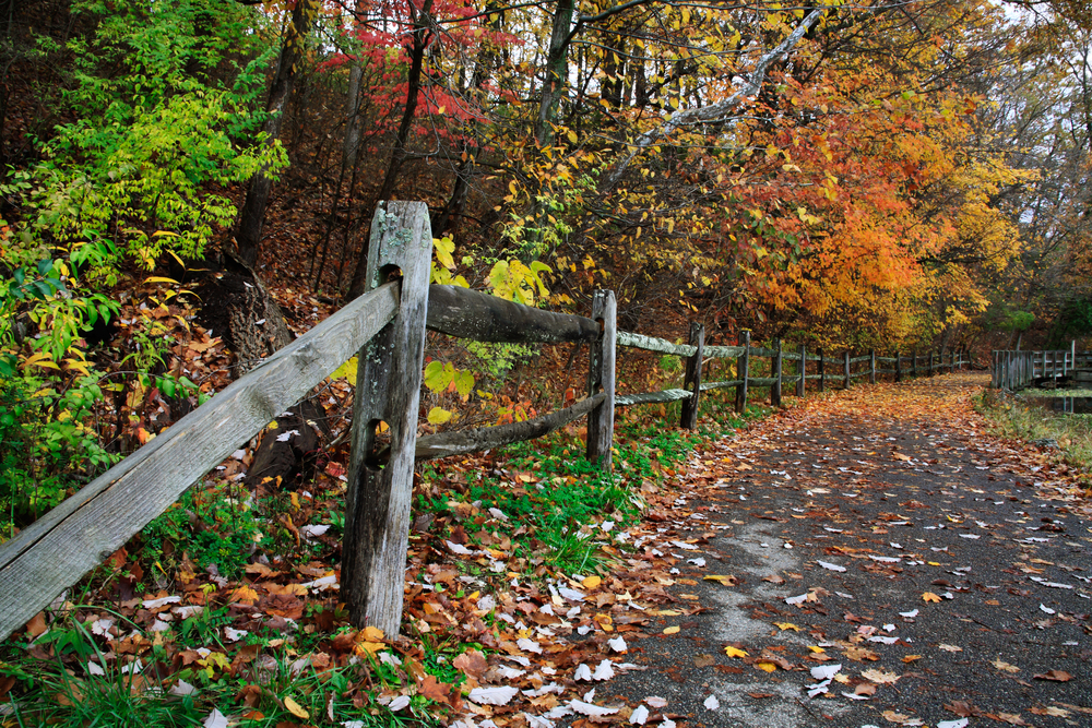 ohio hiking next to wooden fence with autumnal trees next to it,