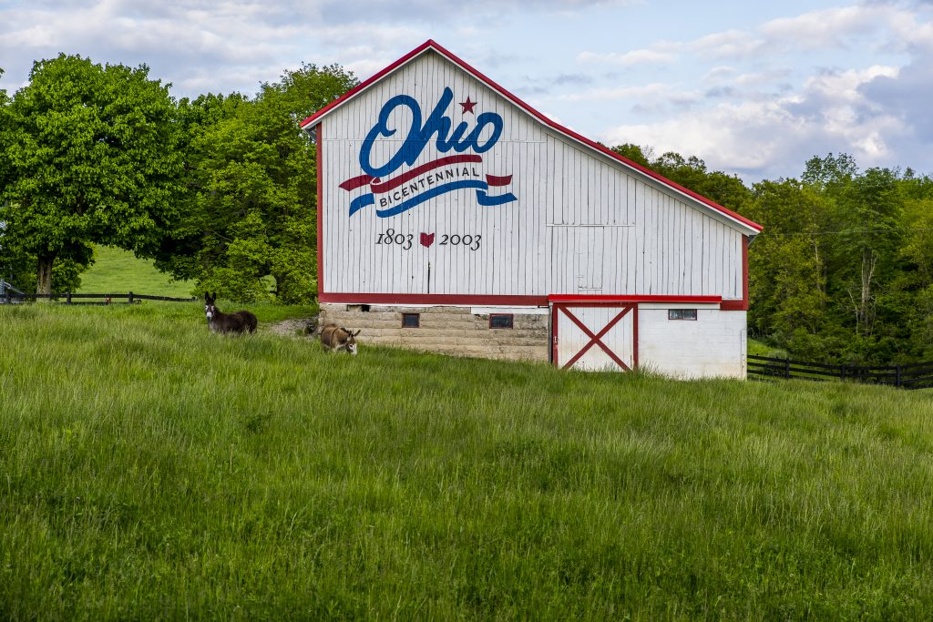 Vintage white barn trimmed in red,  with Ohio logo on side.
