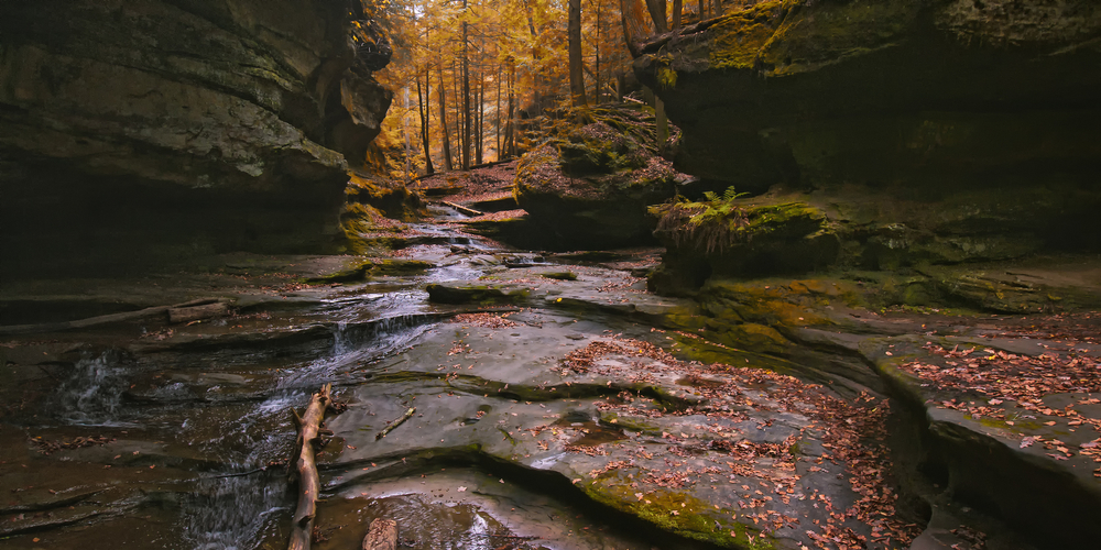 Photo of Ohio fall foliage in background with rocky gorge and small stream in foreground.
