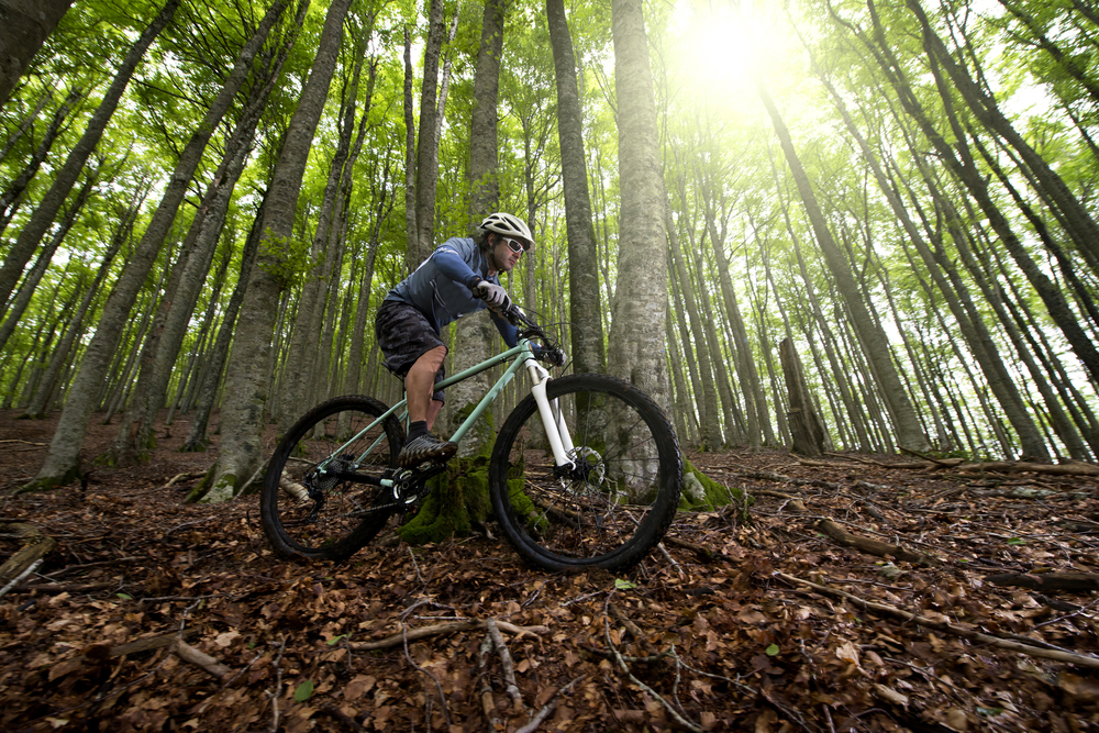 Male riding trail bike through woods with sun peeking through the trees. One of the fun things to do in Hocking Hills.