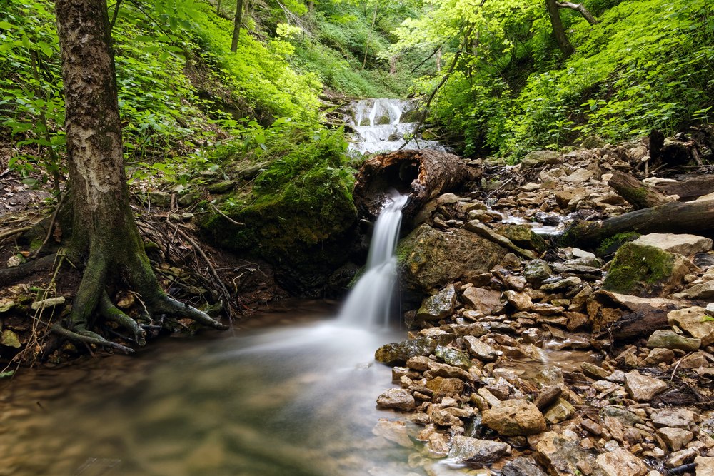 A small secluded waterfall in the woods of Iowa