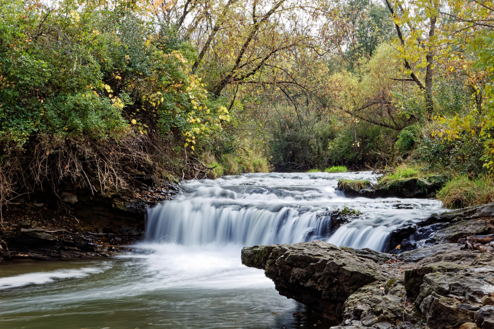 The large Briggs Woods Falls in Iowa on a summer day surrounded by large trees