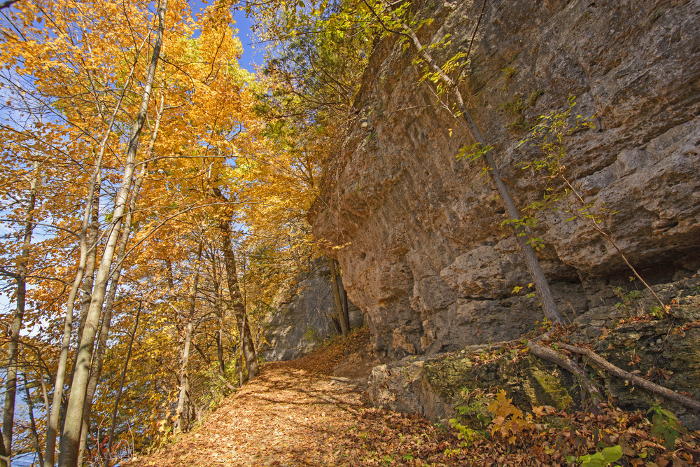 An autumn scene in Backbone Sate park. Orange trees against a rock wall. The article is about caves in Iowa
