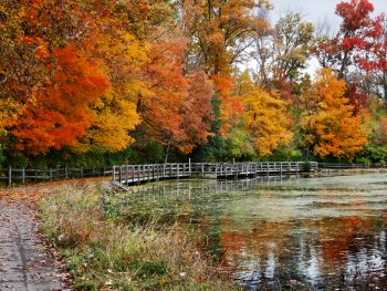 Bright fall foliage in Ohio at park with walking path and lake seen