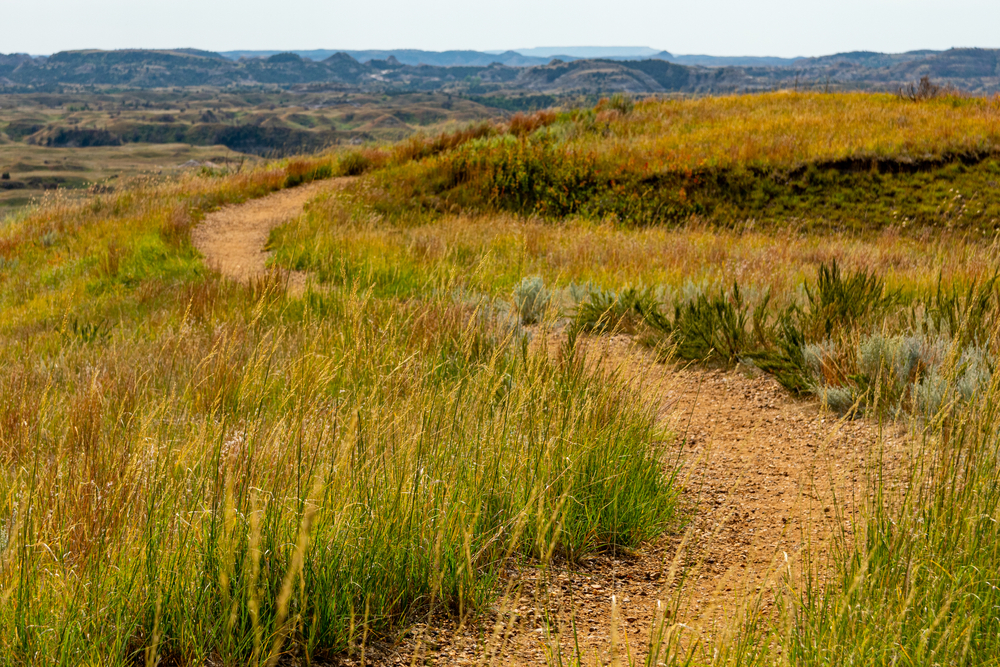 Part of the North Country Scenic trail in Michigan surrounded by prairie grass and hills on the horizon