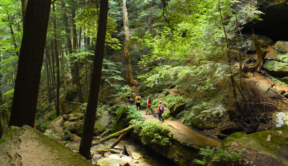 Three hikers with backpacks on trail surrounded by trees, one of the best things to do in Hocking Hills.