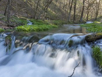 Waterfall in Iowa cascading over rocks into froth of water below.