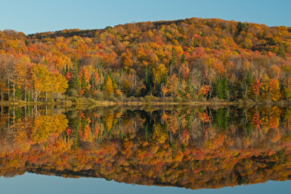 Hiawatha National Forest on a sunny fall day. The picture shows a large lake with a hillside covered in trees. The trees are full of changing leaves. The leaves are yellow, orange, red, and some still green. It is a great stop for Michigan road trips.