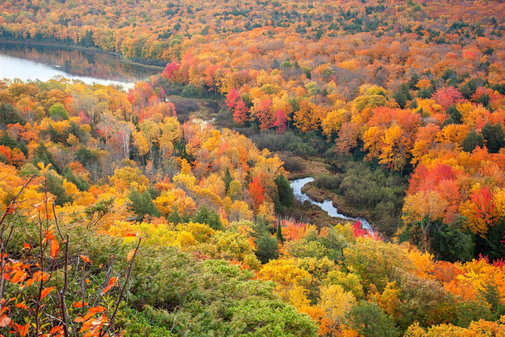 The view of the valley at Porcupine Wilderness State Park. You can see a river snaking through the valley and leading toward a large pond or lake. The entire area is covered in trees. Most of the trees have yellow, orange, and red leaves. Some still have green leaves or no leaves.