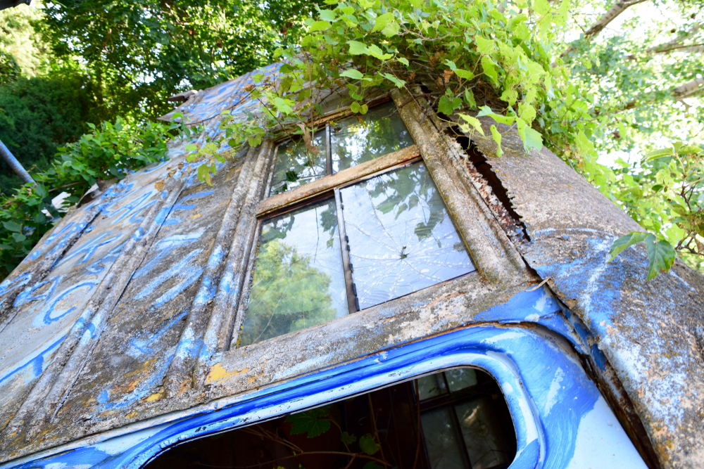 An old bus sticking out the ground covered in ivy . One of the things to do in Kansas