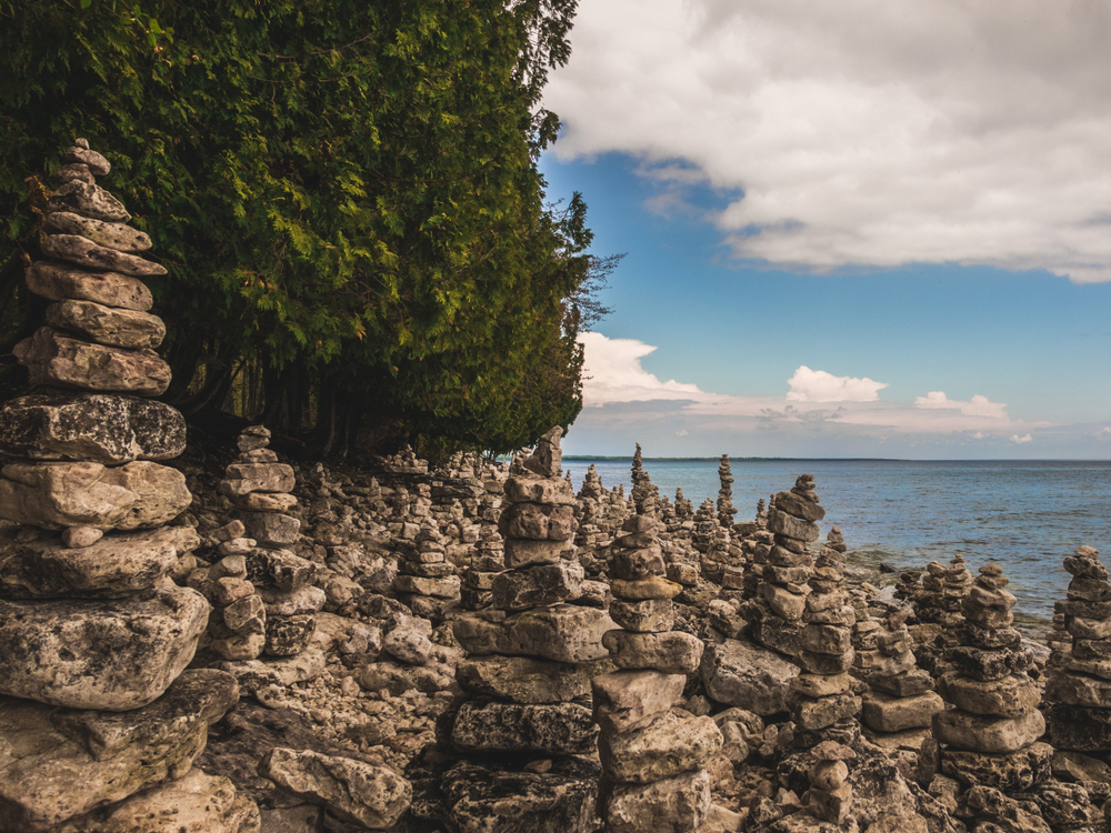 Rocks piled up on a rocky shoreline with trees in the background.