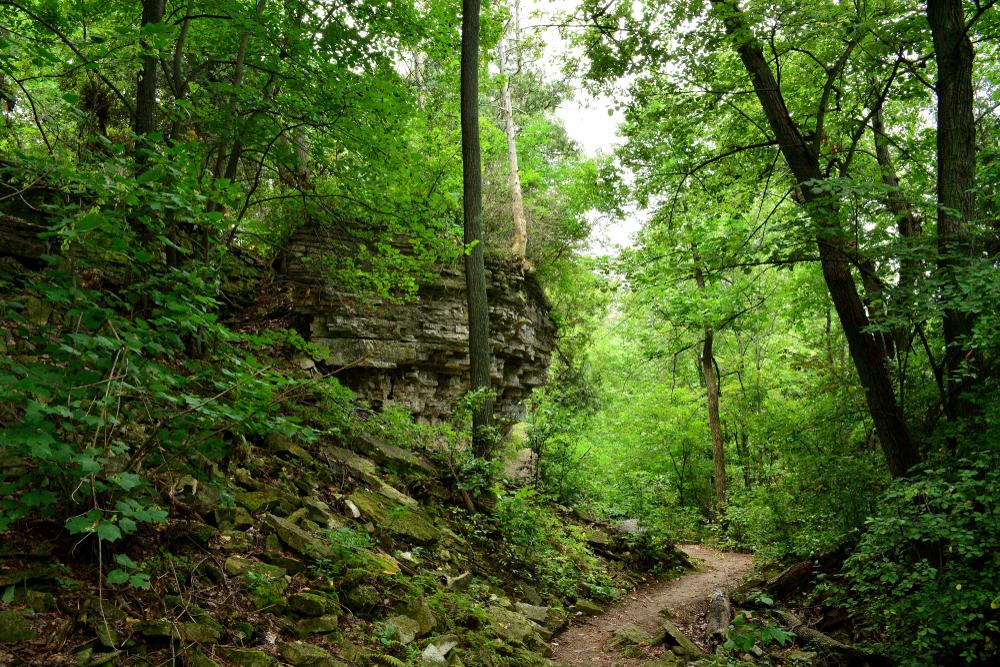 A path winding through a rocky escarpment and trees