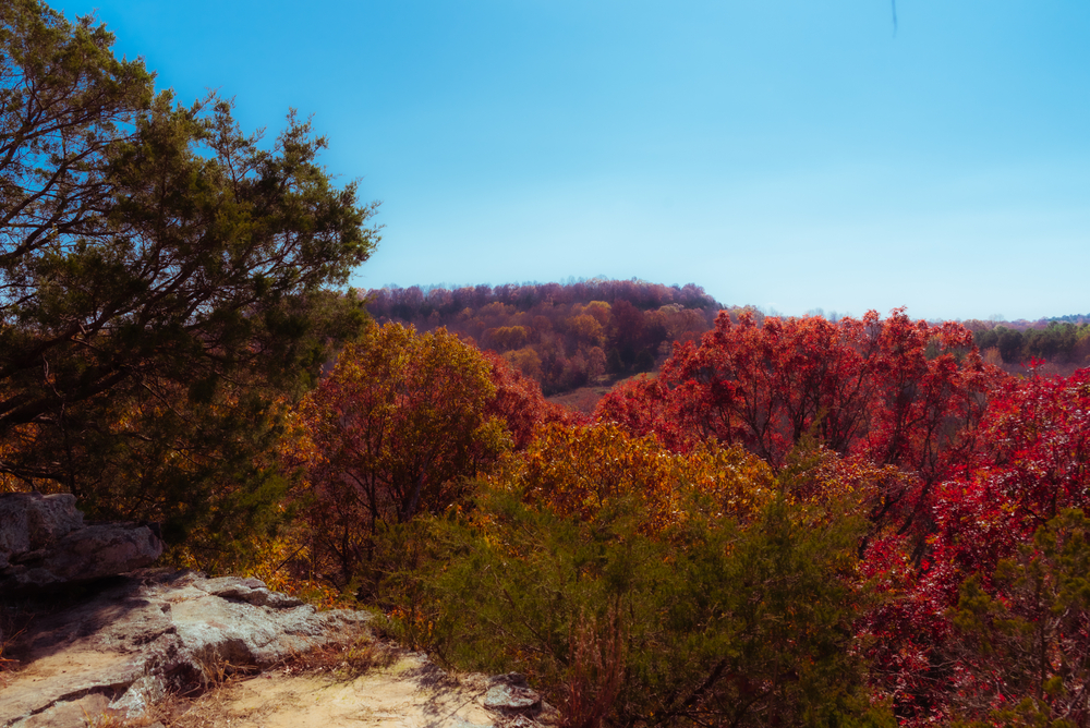 Ferne Clyffe State Park in the autumn with beautiful color and a rock in the foreground.