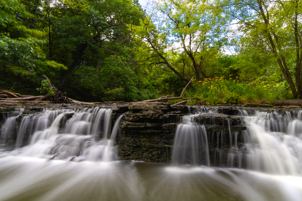 water cascading over rocks with a forest in the background.