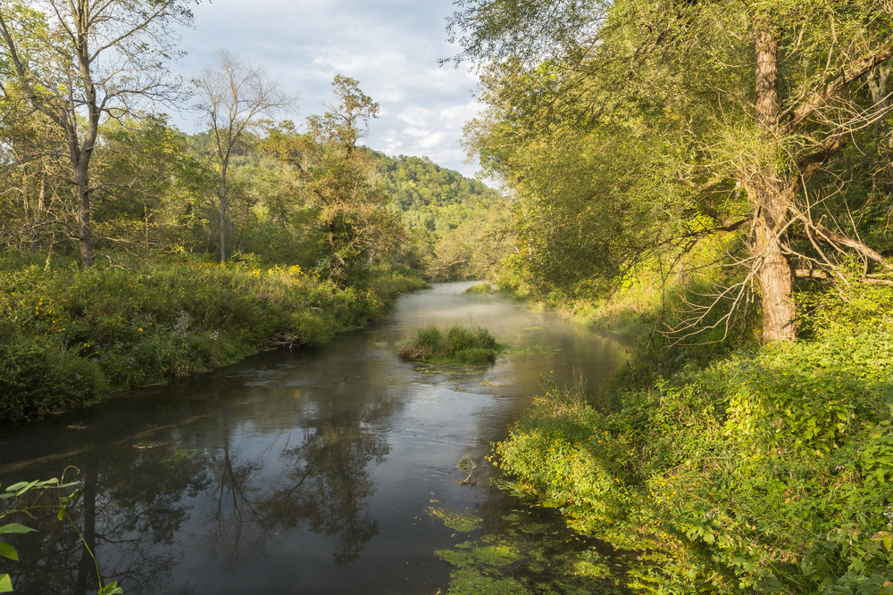 In this state park in Ohio, a creek runs through rolling hills and is lined with green bushes and trees.