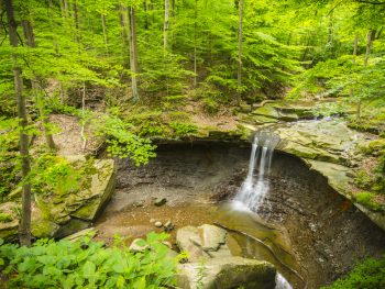 a bridal veil fall surrounded by green trees in the Cuyahoga Valley National Park
