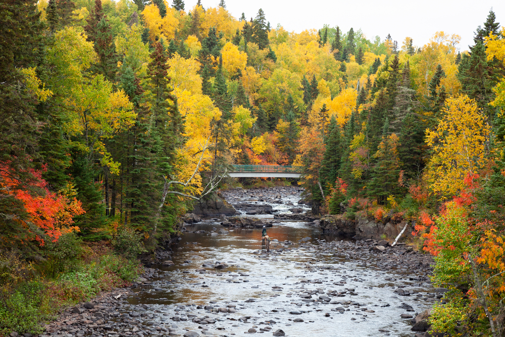 Looking down the Brule River where you can see a metal bridge and people standing in the river. The river is surrounded by large trees and it has a very rocky shore. The trees have yellow, red, orange, and green leaves.