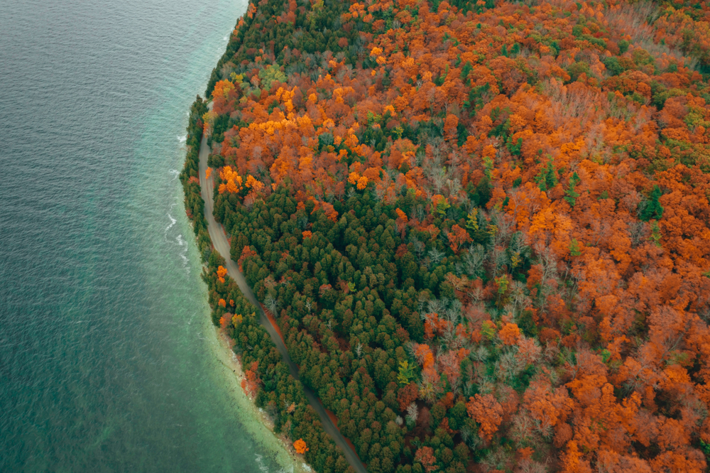 An areal view of fall in Wisconsin showing red orange and greens trees and a lake