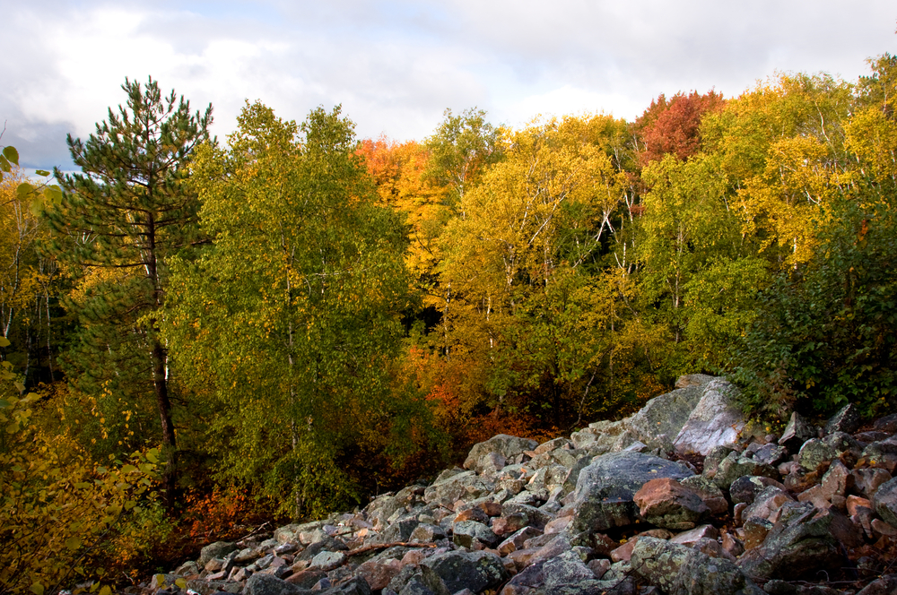 A Rock Bluff with Foliage on Autumn Trees