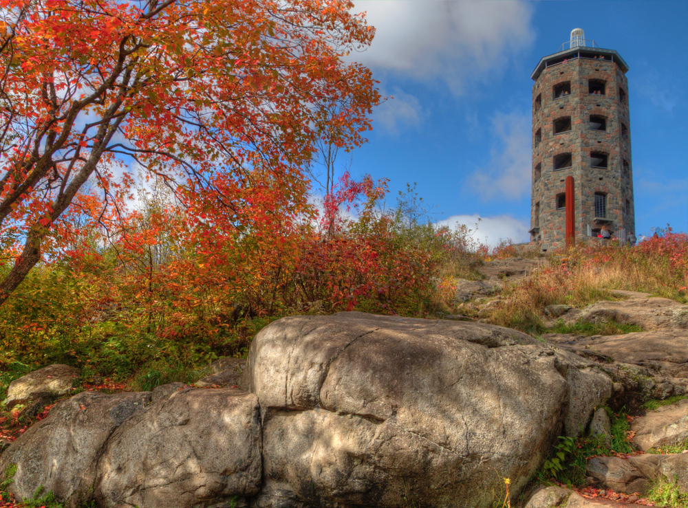 Rocks and bushes in the foreground with a tower in the background Enger Tower is one of the things to do in Duluth