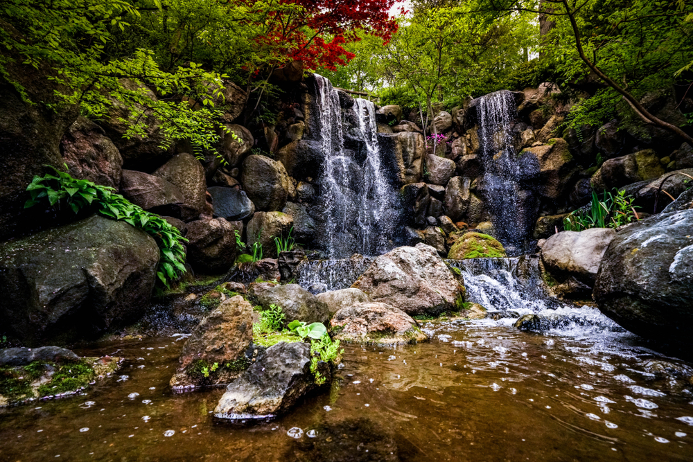 A manmade waterfall in the Anderson Japanese garden. It has two areas where water is falling over a rocky cliff. There are rocks in the basin and a small river that runs off the waterfall. There are grasses, moss, and trees growing around the waterfall. It is one of the best things to do in Illinois.