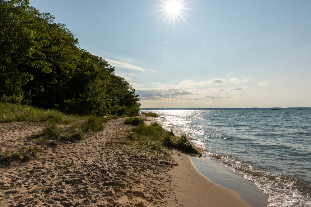 A beach with trees in the background one of the beaches in Traverse City