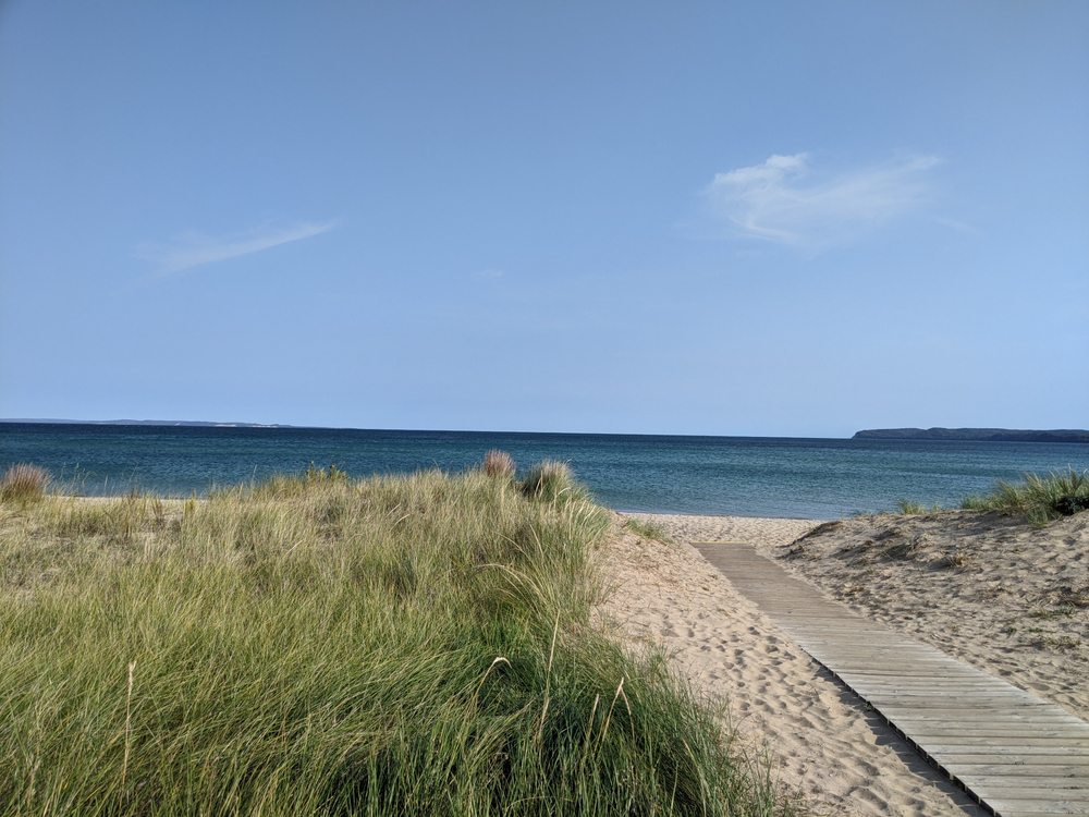 A grassy sandy beach with a boardwalk with the blue sea in the background