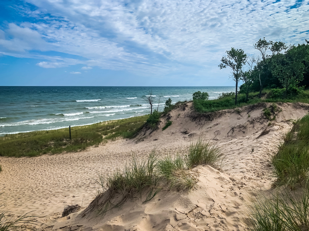 The dunes at the Indiana Dunes National Park. The dunes are covered in short and tall grass. You can see the lake in the distance with waves breaking on the surface. There are small trees and shrubs on the dunes too. One of the best things to do in Indiana.