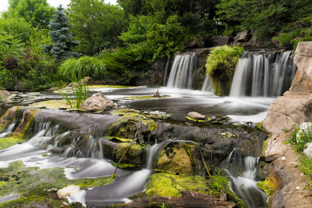 A cascading multi stepped manmade waterfall. The waterfall is surrounded by rocks and grasses, shrubs, and trees. There is moss growing on the rocks and there are rocks in the water with moss on them too.