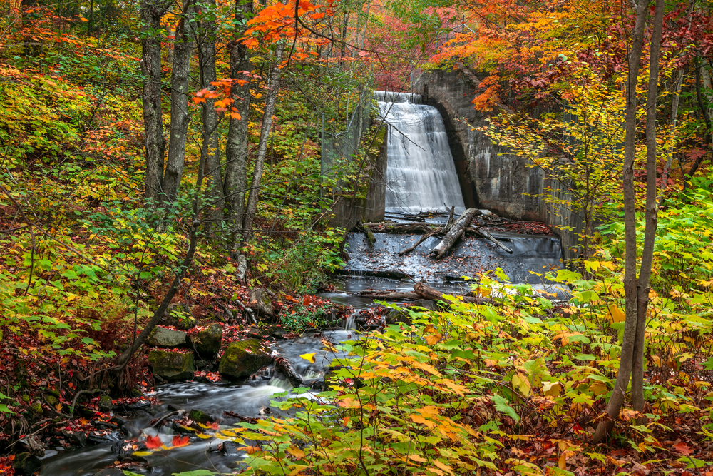 A large waterfall in Michigan going down a rocky cliffside. The waterfall is surrounded by trees. The trees have yellow, green, red, orange, and yellow leaves. There are dead leaves on the ground and on the rocks in the waterfall and river.