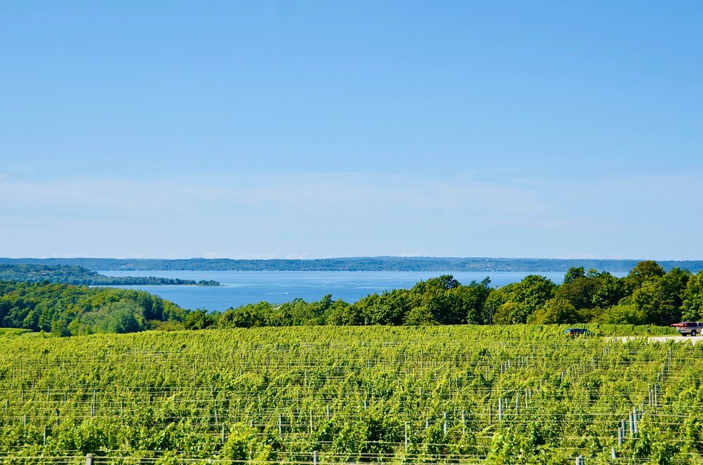 A winery overlooking the lake in an article about Things to Do in Traverse City