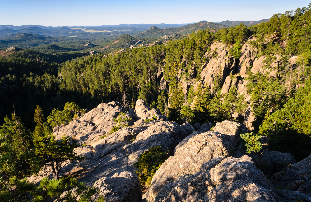 The mountains of Black Hills National Forest.