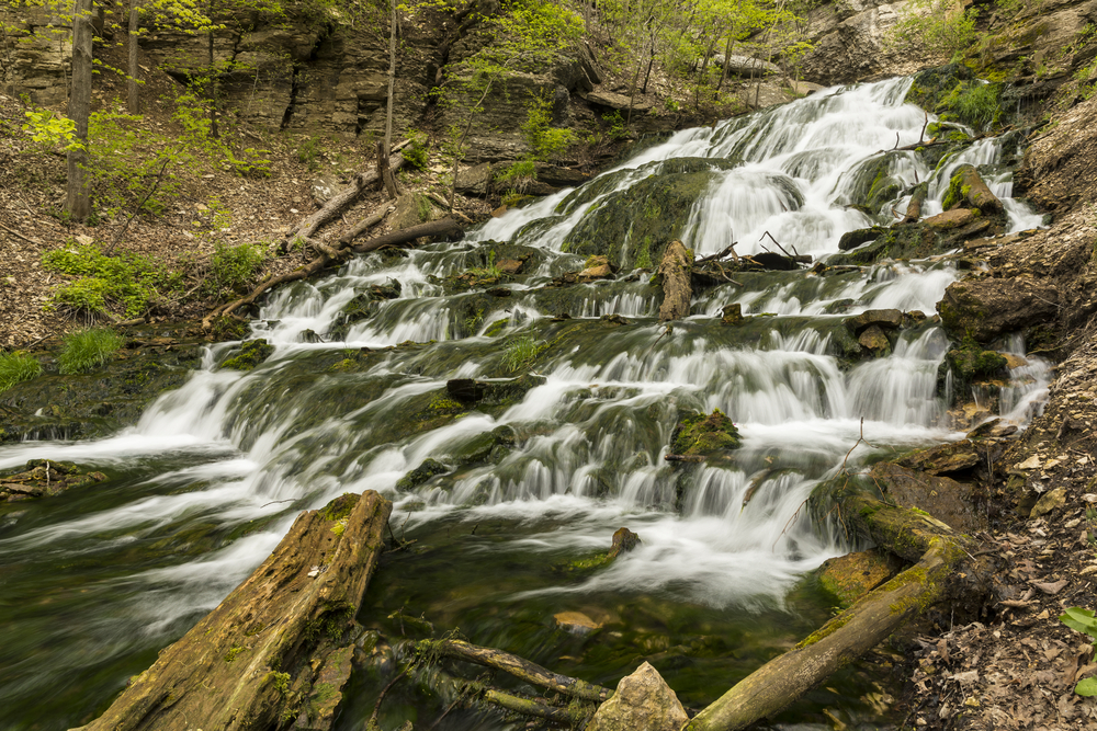 Dunnings Springs Waterfall flowing down over mossy rocks and logs in a forest in Iowa.