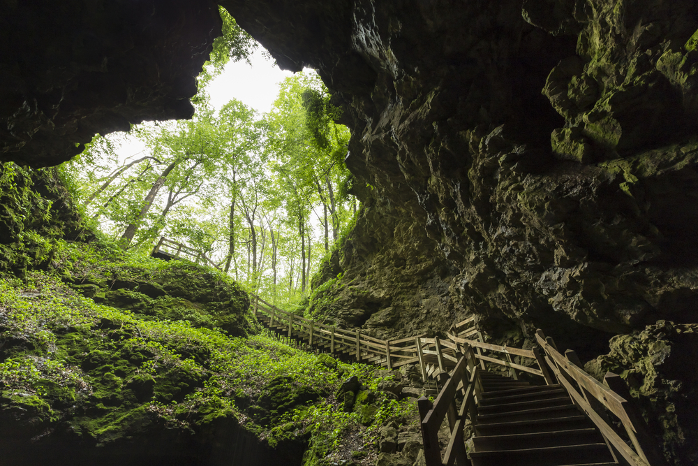 A wooden staircase descending into one of the caves at Maquoketa Caves State Park.