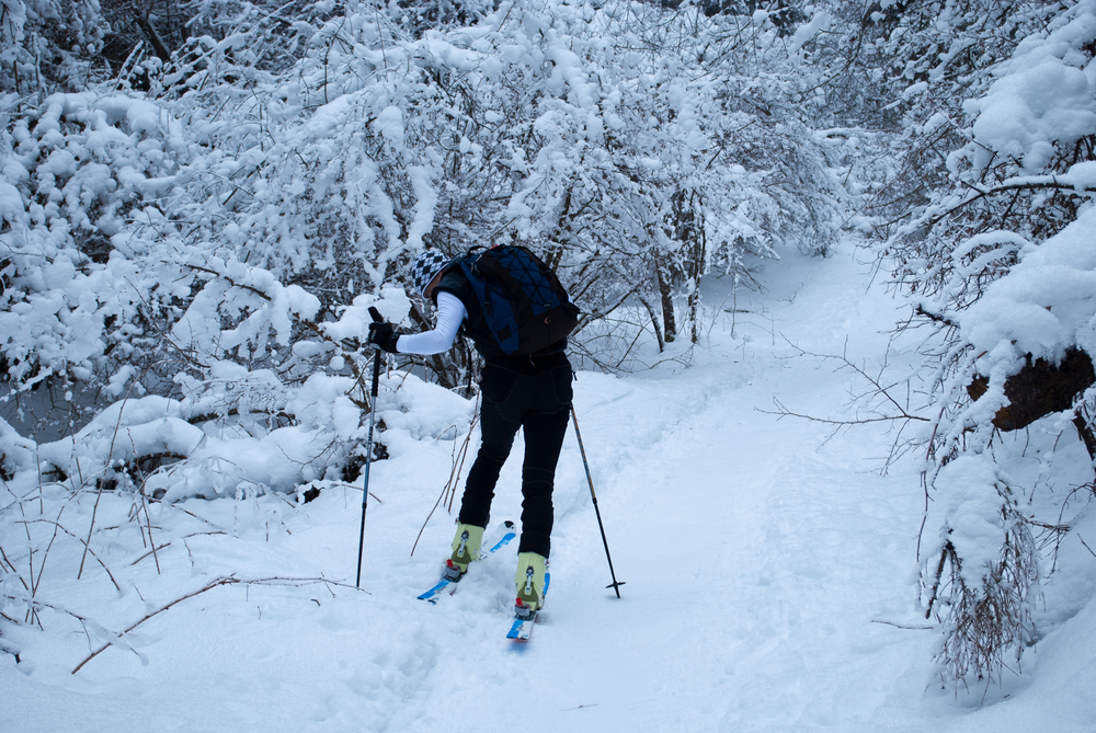 A person wearing all black cross country skiing down a narrow path in the woods. Their cross country skis are a pale green and bright blue. They are using hiking poles to help them get through the thick snow. The path and the trees around it are covered in a thick layer of snow. A fun activity at Michigan ski resorts.