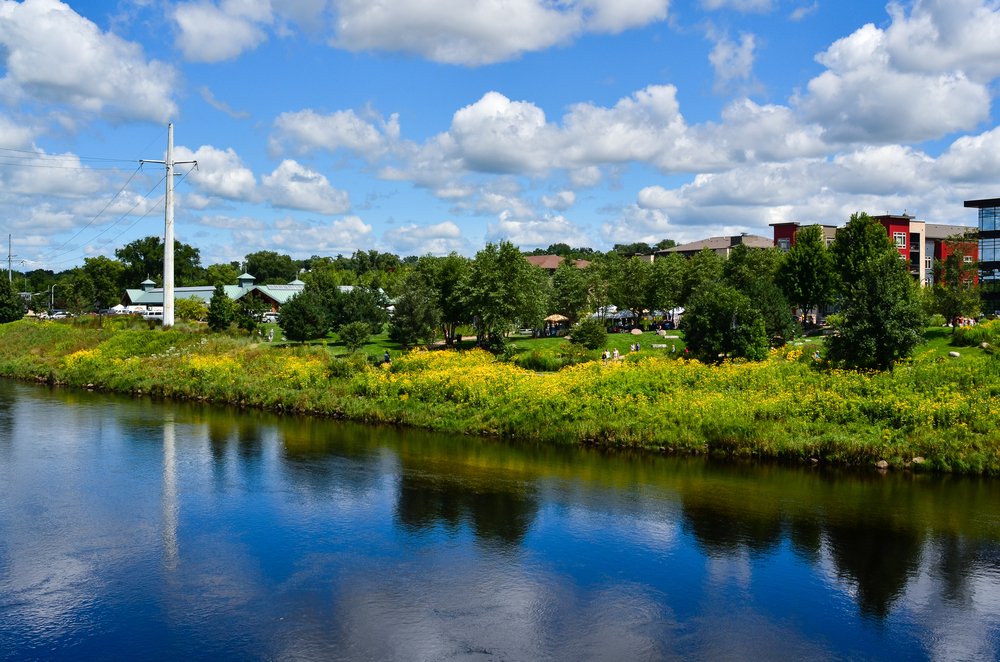 Looking at the shore of the town of Eau Claire. You can see people hanging out on a grassy lawn, modern new buildings, trees, and tall grasses with yellow flowers. The sky is blue with white clouds.