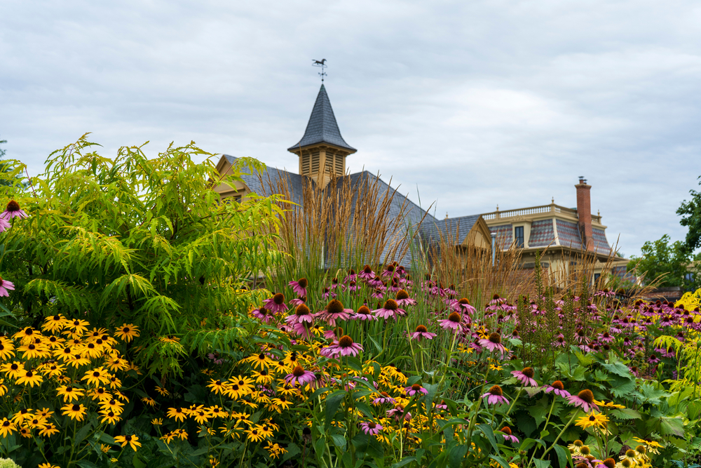 A view of flowers in a garden in front of a large old home. The flowers are purple and yellow. there are also tall grasses and shrubs.