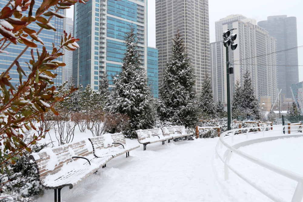 A walkway with benches on the side. The walkway and benches are covered in snow and the trees around it are also covered in snow. In the background you can see skyscrapers.