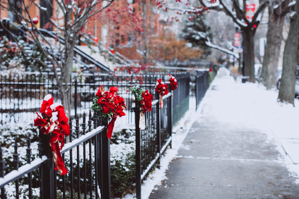 A residential sidewalk in Chicago. There are black wrought iron fences in front of houses that have red Christmas ribbons on them. The bushes are covered in snow and you can see snow on the sidewalk.