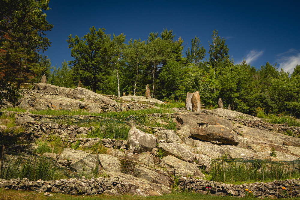 A rocky cliff with rock sculptures perched on top of it in various places. There is grass and yellow flowers growing on the rocks. Behind them you can see trees.