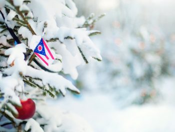 Ohio flag on snow covered evergreen tree