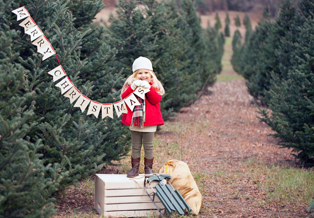 Caucasian little girl holding banner in Ohio Christmas tree farm.