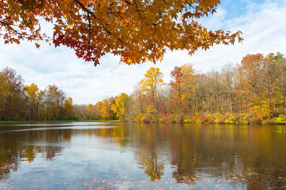 A lake at the Eagle Creek Park surrounded by fall foliage.