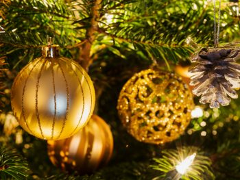 Festive gold ornaments handing from green tree limbs illuminated with white lights.