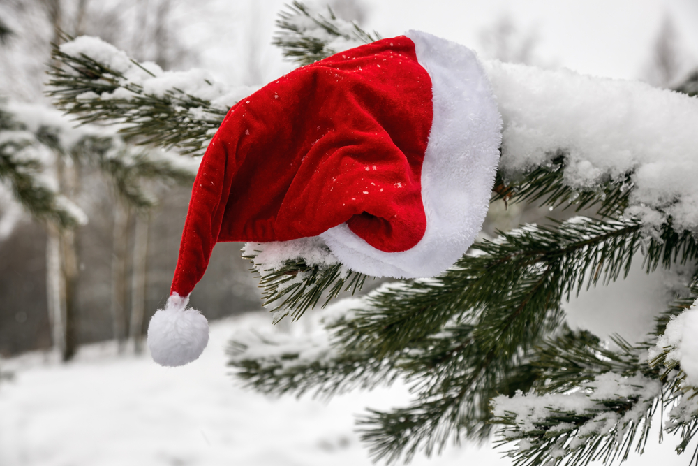 Santa hat hanging on a snowy evergreen tree.