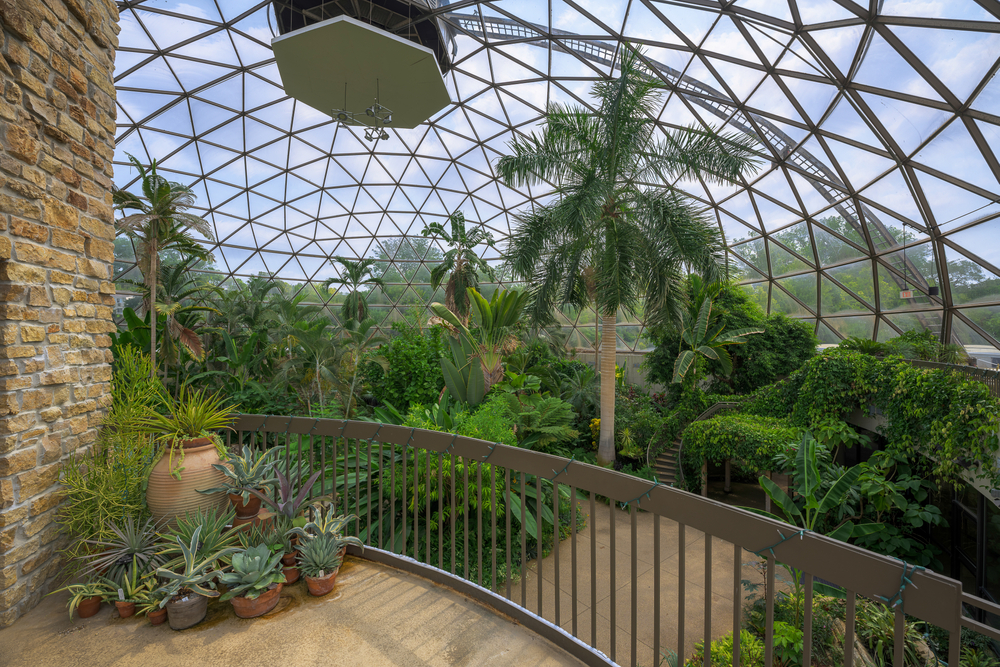 Inside the conservatory at the Greater Des Moines Botanical Garden with many lush plants.